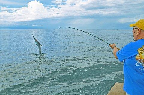 "Jake Jordan releasing one of 18 Blue Marlin he caught on fly during his 2014 summer season at the ""Costa Rica, Blue Marlin Fly Fishing School"" aboard th evessel Dragin Fly, Los Suenos Costa Rica, June, July, and August, of 2014"