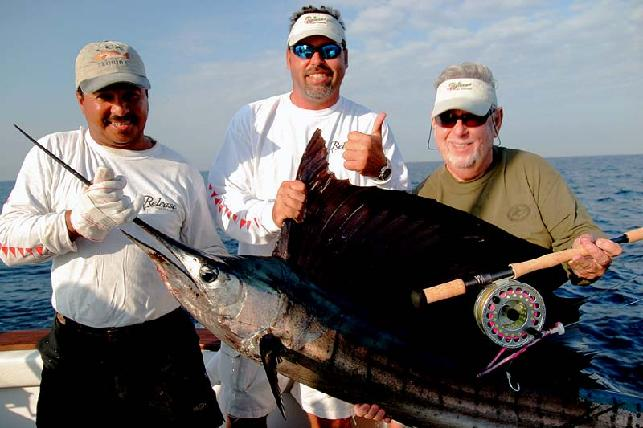 Sailfish School, Sailfish Guatemala,Sailfish on fly
